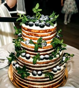 Moderne Tortenkunst - Naked Cake Kurs